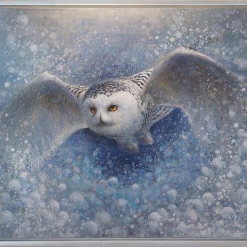 Ewoud de Groot - Snow Owl