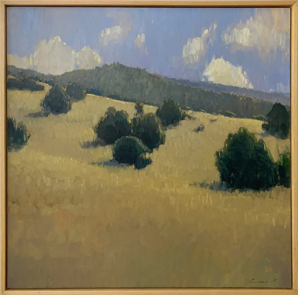 Peter Campbell - Summer Hillside