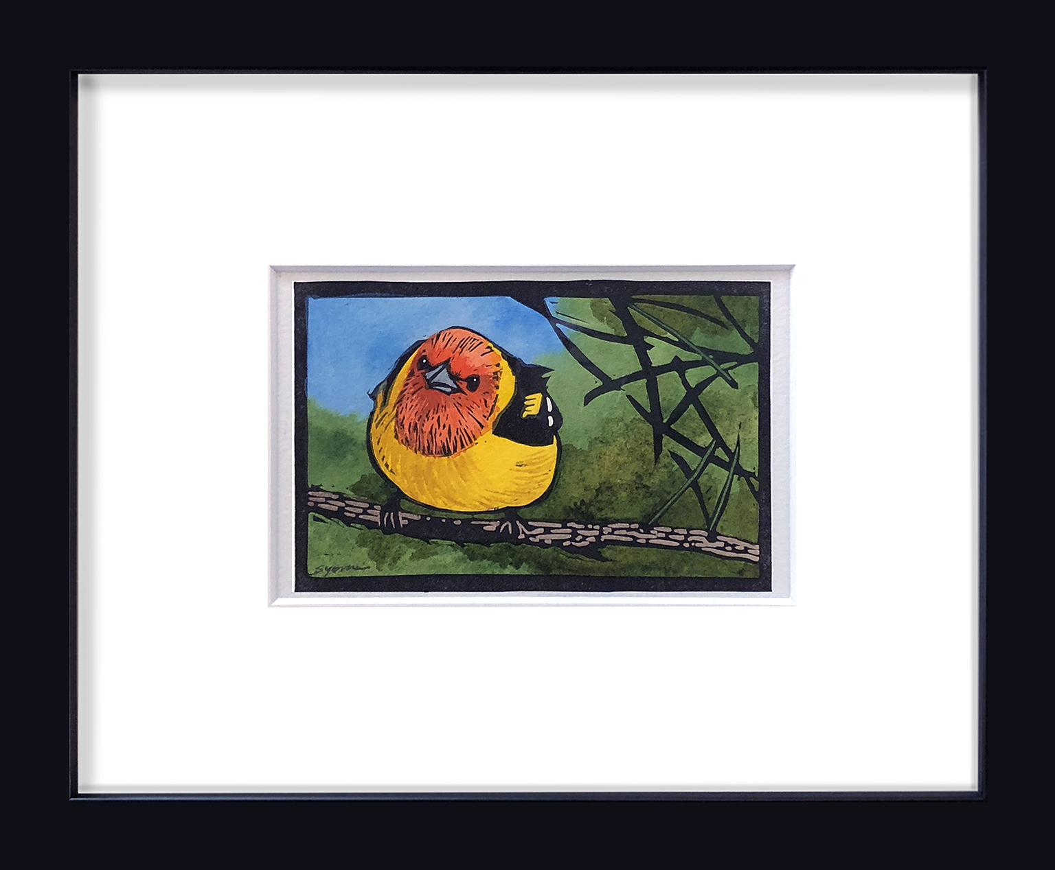 Sherrie York - Western Tanager - 4