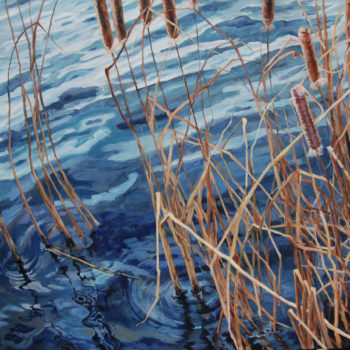 Heather Foster - Gila Cattails