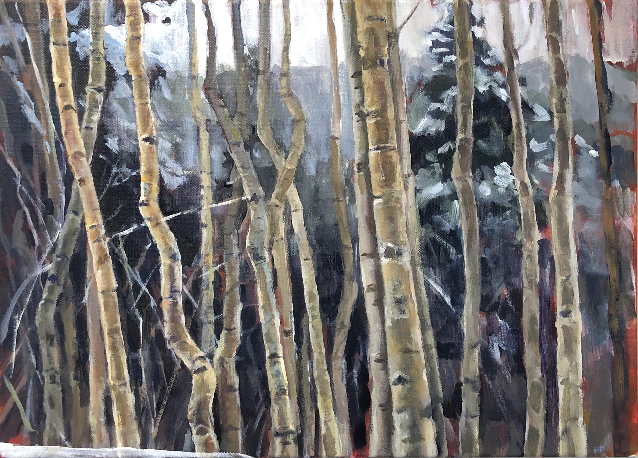 Heather Foster - Aspens in Snow