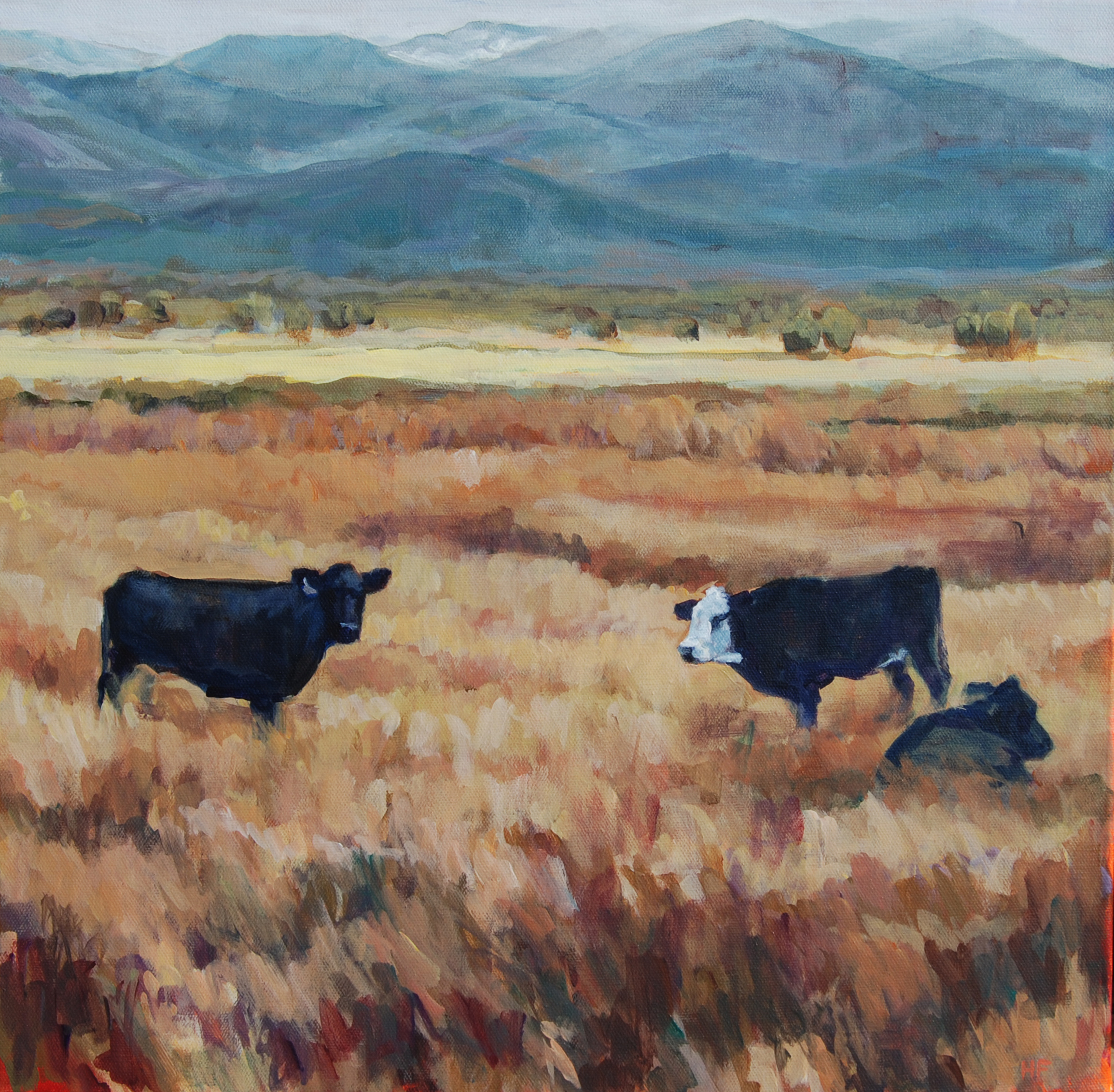 Heather Foster - Salida Three